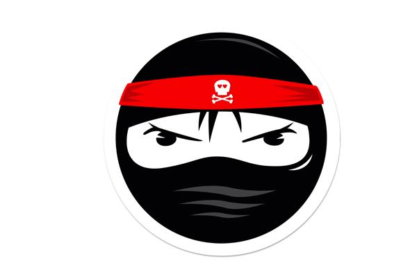 MID-Badgirl Ninja